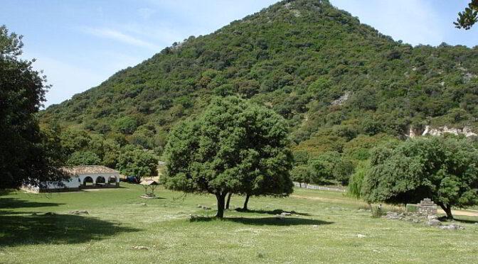 Area Recreativa Los Llanos del Campo.