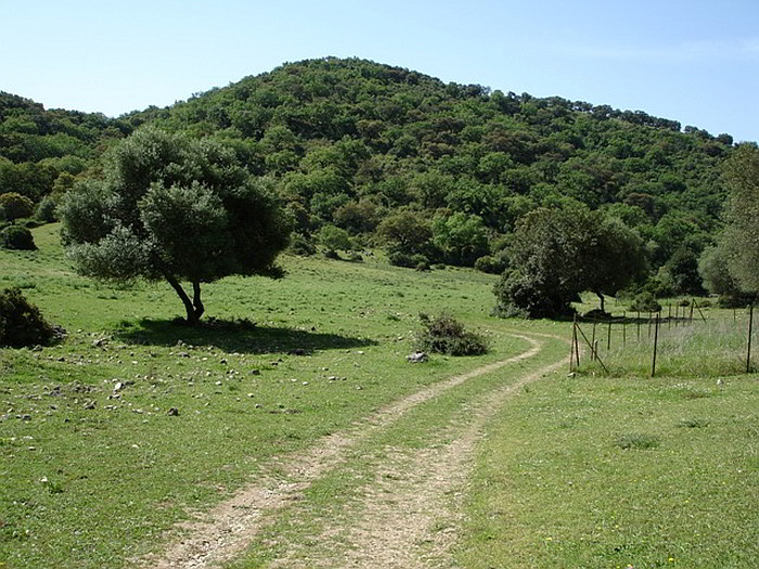 Sendero Beral - Llanos del Campo - una de las áreas recreativas más amplias del parque de la Sierra de Grazalema