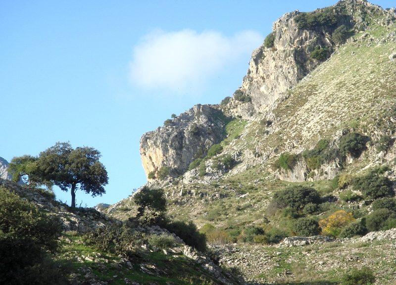 Walking in the Sierra de Grazalema