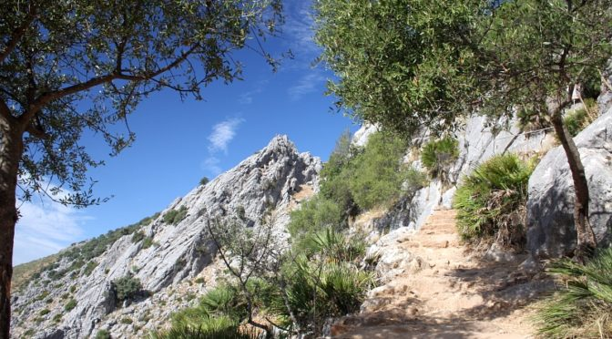 Find a hotel in the Sierra de Grazalema