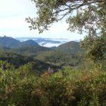 Sierra de Grazalema andalucia spain